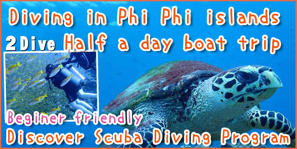 Scuba Diving Phi Phi island Phuket Thailand