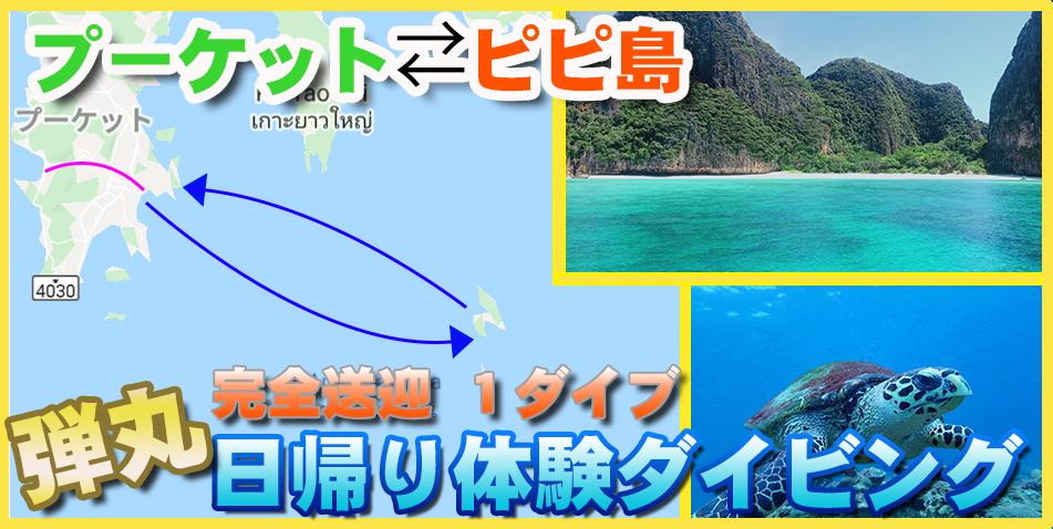 プーケットピピ島体験ダイビング タイ ダイビング