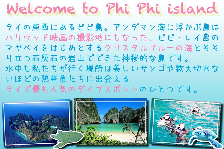 ピピ島ダイビング日本人インストラクター プーケット ダイビング タイ ダイビング