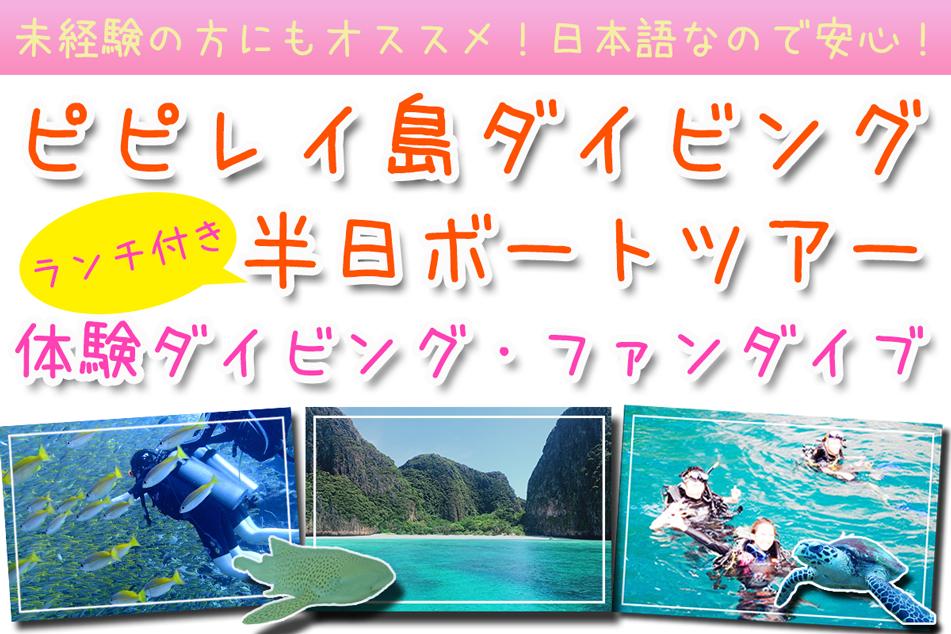 ピピ島ダイビング日本人ピピ島体験ダイビングファンダイブ