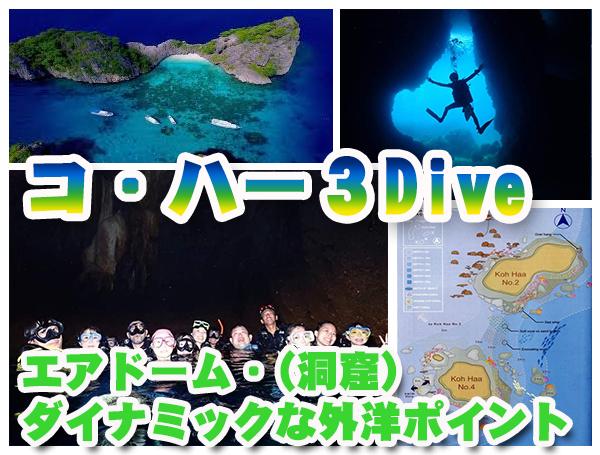 コハーコ・ハーピピ島ダイビング