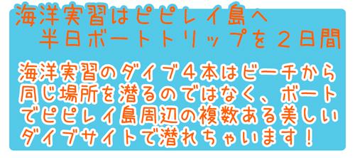 ピピ島ダイビングライセンスPADIオープンウォーターダイバーコース特徴1