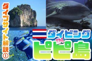 【ピピ島】ダイブサイト紹介①|ピピ島ダイビングの代表的なポイントを解説!